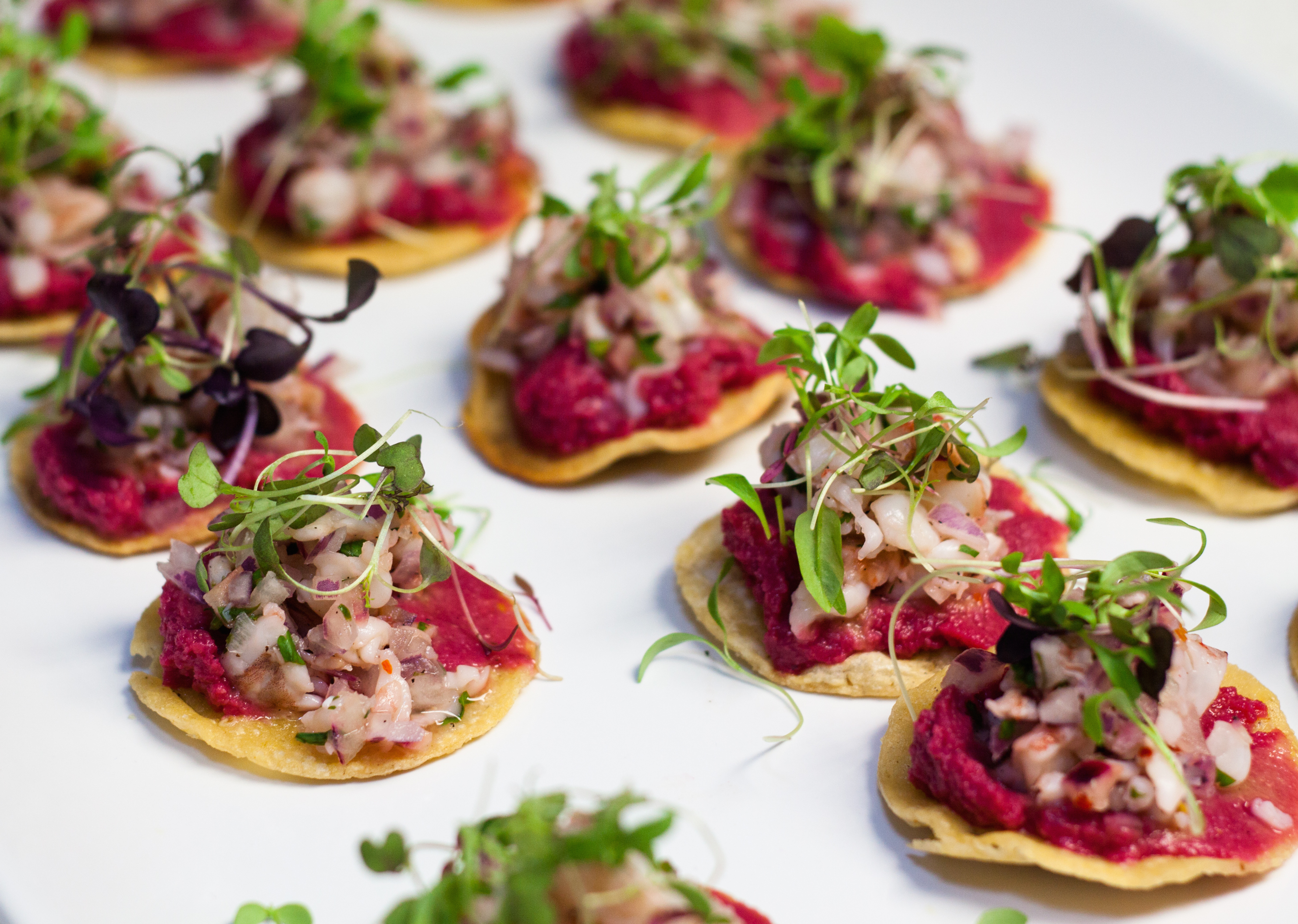 Tiger Shrimp Ceviche with Red Beet Hummus